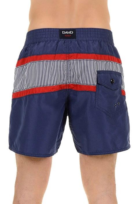Мужские роскошные пляжные шорты Franco