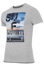 Мужская брендовая футболка 4F TSM033