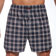 Мужские клетчатые шорты 1604