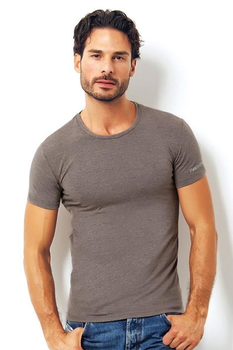 Мужская итальянская футболка Enrico Coveri 1504 Brown
