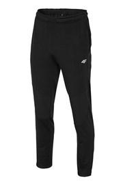 Мужские спортивные брюки 4f