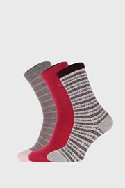 3 ПАРИ жіночих шкарпеток Calvin Klein Katerina